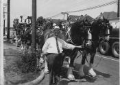 McGinley family--John, bud horses and Washington st